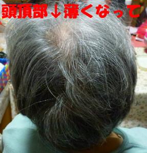 P1040207_sh01_4